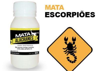 escorpiones-pt
